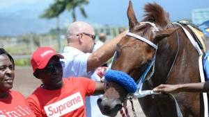 Triple Crown winner Supreme Soul remains stranded in the United States
