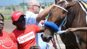 Triple Crown winner Supreme Soul return to Jamaica now imminent